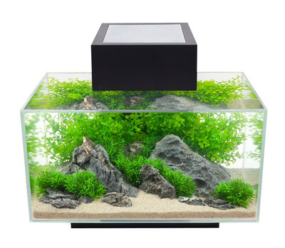 Fluval EDGE Aquarium 23L Black