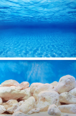 Aquarium Background Roll Double Sided 60cm high - Seaview/White Stone