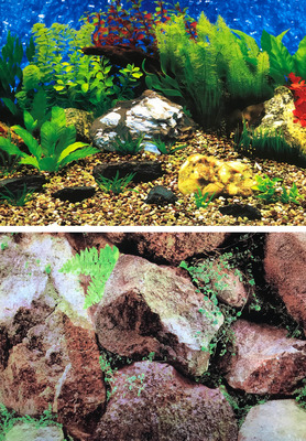 Aquarium Background Double Sided 45cm high - Hawaii Blue