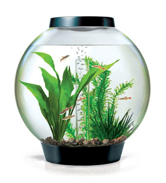 biOrb Classic 15L MCR Circular Aquarium Black - Complete Kit