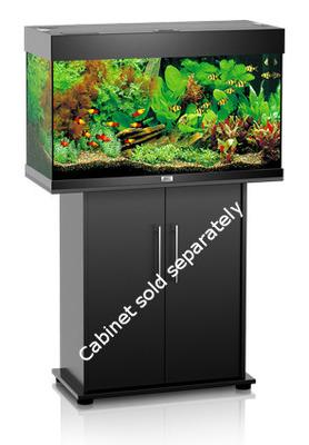 Juwel Rio 125 Led Aquarium Black Tank Only The Aquarium