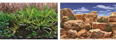Seaview Aquarium Background Roll Double Sided 15.24 metres x 45.7cm - Tropical Terrarium-Desert Sky