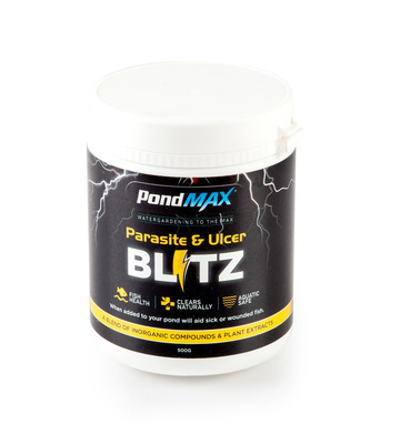 PondMAX Parasite and Ulcer Blitz Treatment 500g