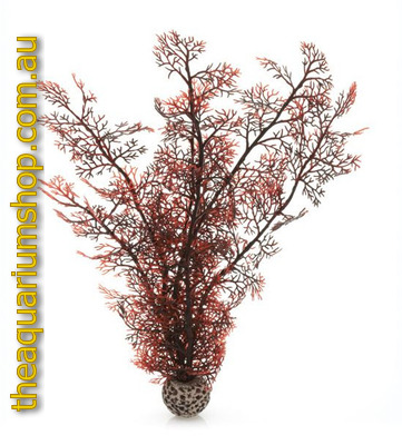 biOrb Crimson Sea Fan Large