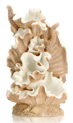 biOrb Clamshell Ornament Large
