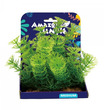 Amazon Jungle Cabomba Display 15cm
