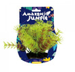 Amazon Jungle Myriophyllum Display 10-12cm