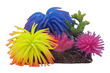 Anemone Gardens Ornament No 1