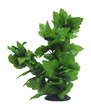 Aqua Dekore Aquarium Silk Plant Tall Spatophylum Tree 40cm