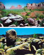 Aquarium Background Double Sided 50cm high - Arizona Desert A and B