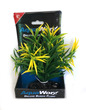 Deluxe Bunch Plant 6inch Green bush yellow tip