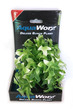 Deluxe Bunch Plant (6inch) Green-white leafy bush