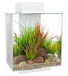 Fluval EDGE NEW 2.0 Aquarium 46L White
