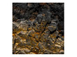 Gold Rock Poster Background  for Aquarium Terrarium Vivarium