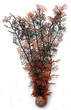 biOrb Crimson Sea Fan Extra Large *** ON SPECIAL NO PACKAGING ***