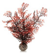biOrb Crimson Sea Fan Small