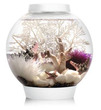biOrb Classic 15L Circular Aquarium White - Complete Kit