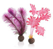 biOrb Kelp Plant Set Small Pink
